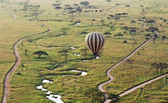 ballong safari