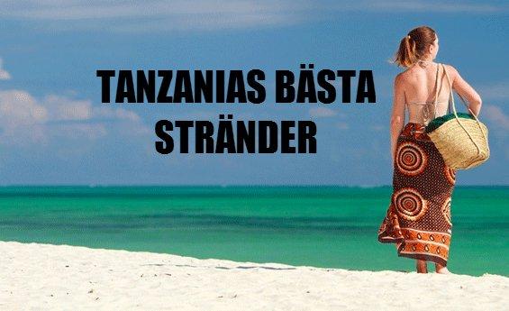 Stränder i Tanzania