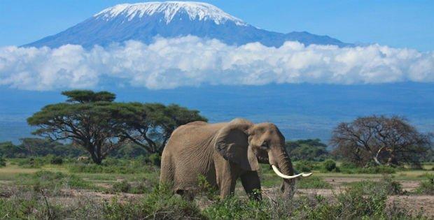Sevärdheter och Saker att göra i Tanzania