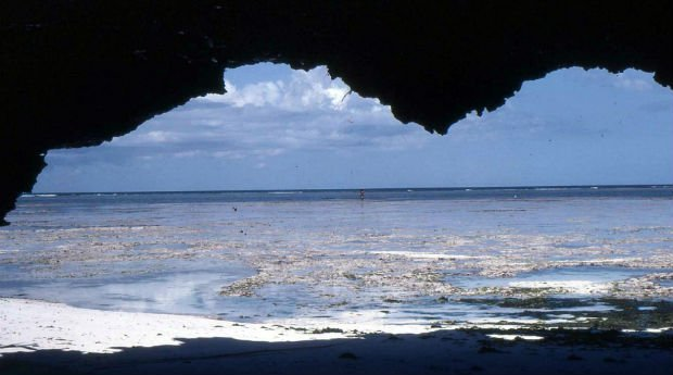 Bongoyo_island